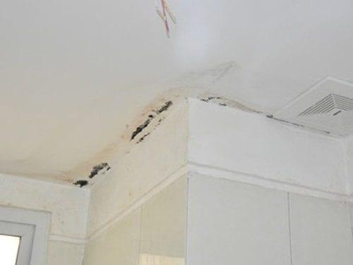 Chống thấm cổ trần nhà bị nứt chân chim