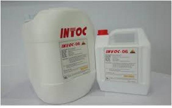 INTOC-06